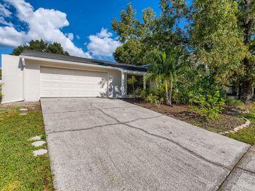 16709 SILVER MOSS DRIVE, Tampa, FL, 33624,
