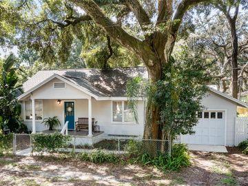 1207 E LOUISIANA AVENUE, Tampa, FL, 33603,