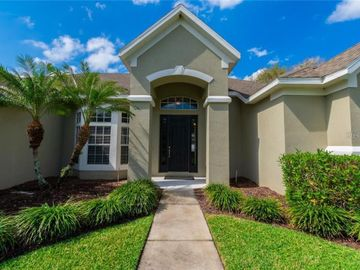 305 MAGNETA LOOP, Auburndale, FL, 33823,