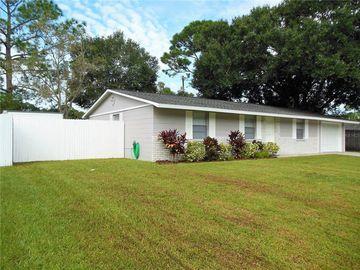 19010 SUNLAKE BOULEVARD, Lutz, FL, 33558,