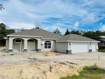 8392 CHRISTOPHER LANE, Weeki Wachee, FL, 34613,