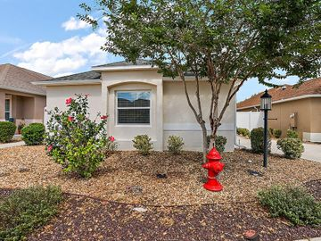 771 ELLIOTT AVENUE, The Villages, FL, 32163,