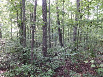 0 Deer Ridge Rd, Waynesboro, TN, 38485,