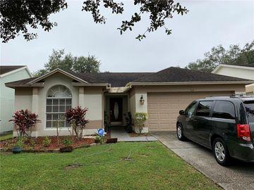 7509 SAVANNAH LN, Tampa, FL, 33637,