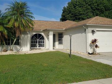 28237 TANGLEWOOD DRIVE, Wesley Chapel, FL, 33543,