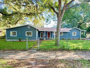 4013 DELEUIL AVENUE, Tampa, FL, 33610,