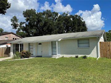 6713 AMUNDSON STREET, Tampa, FL, 33634,