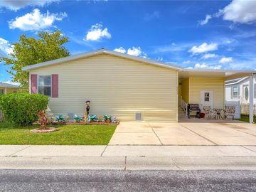 8420 FANTASIA PARK WAY, Riverview, FL, 33578,
