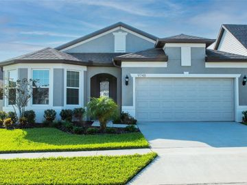9748 IBIS GROVE BOULEVARD, Wesley Chapel, FL, 33545,