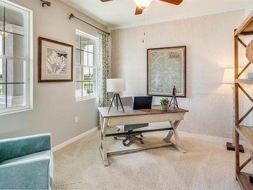 30647 PENNY SURF LOOP, Wesley Chapel, FL, 33545,