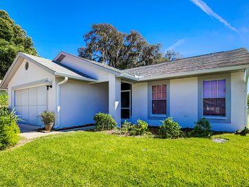 13036 PINNACLE LANE, Hudson, FL, 34669,
