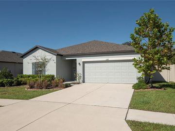 12187 CRIOLLO ROAD, Spring Hill, FL, 34610,