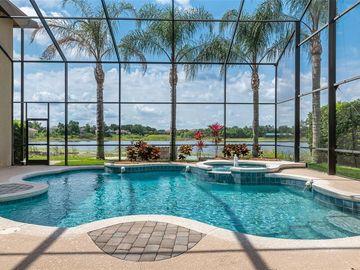 Swimming Pool, 9125 LAKE COVENTRY COURT, Gotha, FL, 34734,
