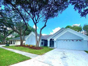 18213 CYPRESS STAND CIRCLE, Tampa, FL, 33647,