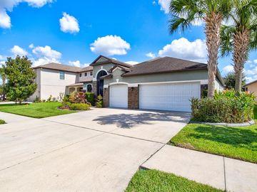 8445 WHITE POPLAR DRIVE, Riverview, FL, 33578,