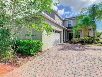 6167 WATERSIDE ISLAND LANE, Winter Garden, FL, 34787,