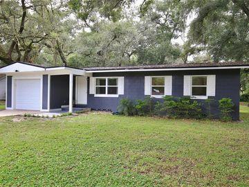 318 WADE AVENUE, Deland, FL, 32724,