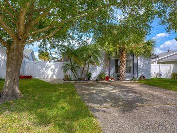 5033 SPRINGWOOD DRIVE, Tampa, FL, 33624,