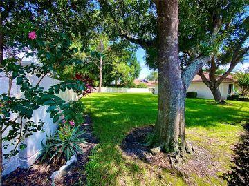 18403 AINTREE COURT, Tampa, FL, 33647,