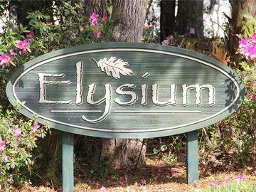 1017 ELYSIUM BOULEVARD, Mount Dora, FL, 32757,
