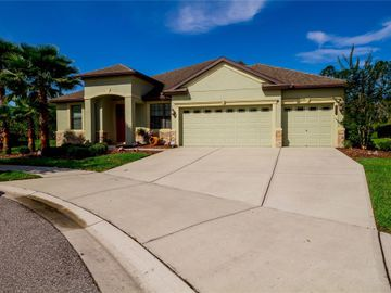 20011 OUTPOST POINT DRIVE, Tampa, FL, 33647,