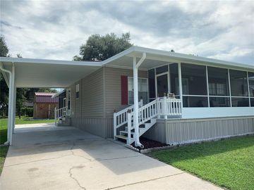 9141 SAMARITAN AVENUE, Polk City, FL, 33868,
