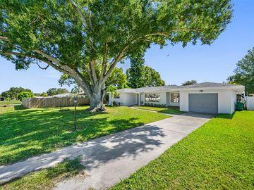 3141 DREW STREET, Clearwater, FL, 33759,