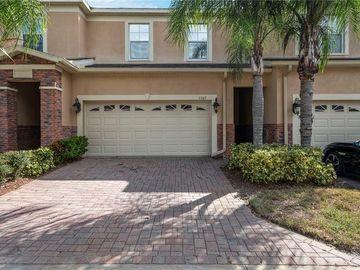 1507 HILLVIEW LANE, Tarpon Springs, FL, 34689,