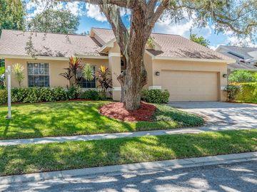 4791 KLOSTERMAN OAKS BOULEVARD, Palm Harbor, FL, 34683,