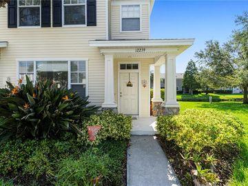 12239 COUNTRY WHITE CIRCLE, Tampa, FL, 33635,