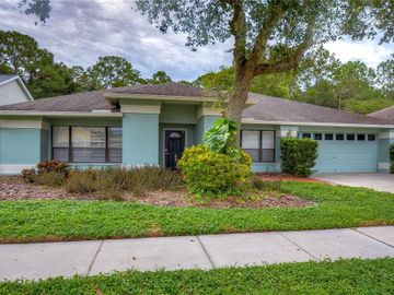 9519 PEBBLE GLEN AVENUE, Tampa, FL, 33647,
