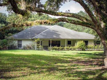 1507 LAKE MARIAN ROAD, Kenansville, FL, 34739,