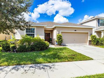 11621 STORYWOOD DRIVE, Riverview, FL, 33578,