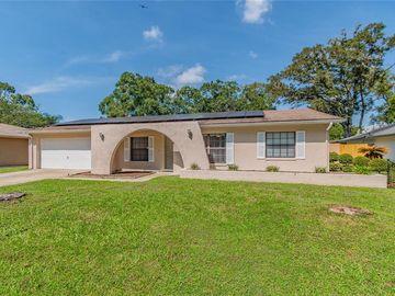 4219 BRIARBERRY LANE, Tampa, FL, 33624,