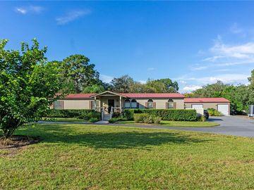 15241 GLENROCK ROAD, Spring Hill, FL, 34610,