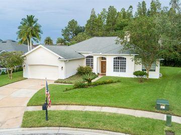 18414 CANARY LANE, Lutz, FL, 33558,