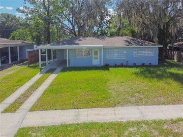 216 W SENECA AVENUE, Tampa, FL, 33612,