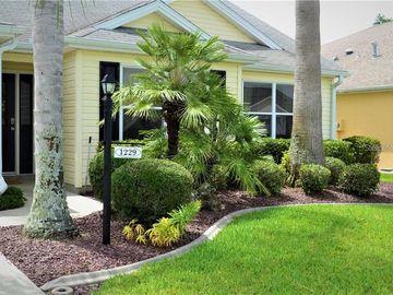1229 ADDISON AVENUE, The Villages, FL, 32162,