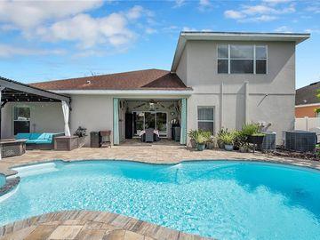 8619 TENBRIDGE WAY, New Port Richey, FL, 34654,