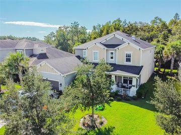 8835 BELLA VITA CIRCLE, Land O Lakes, FL, 34637,