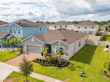299 WHIRLAWAY DRIVE, Davenport, FL, 33837,