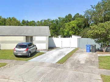 8544 BRIAR GROVE CIRCLE, Tampa, FL, 33615,