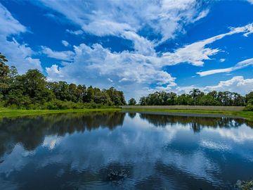 22018 PRISTINE LAKE BOULEVARD, Land O Lakes, FL, 34637,