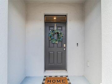 8657 FALLING BLUE PLACE, Riverview, FL, 33578,