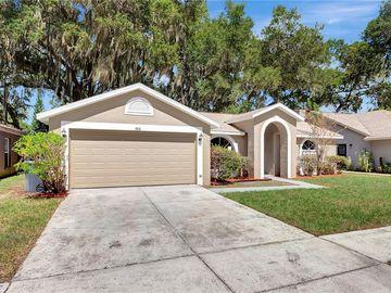 1816 LANDSIDE DRIVE, Valrico, FL, 33594,