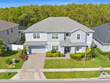 2203 PEARL CIDER STREET, Orlando, FL, 32824,