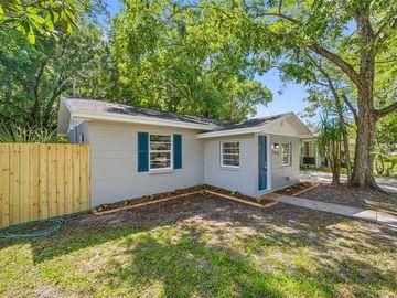 3015 E IDLEWILD AVENUE, Tampa, FL, 33610,