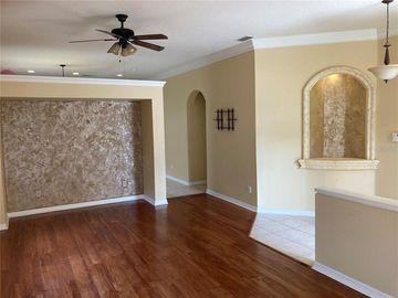 16327 LAUREL GARDEN COURT, Spring Hill, FL, 34610,