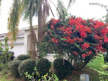 5121 BELLTHORN DRIVE, Orlando, FL, 32837,