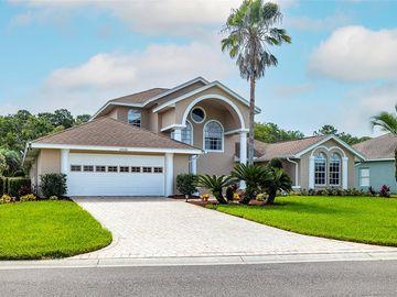 12606 FLAMINGO PARKWAY, Spring Hill, FL, 34610,